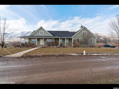 Payson Single Family Home For Sale: 8164 S 5600 W