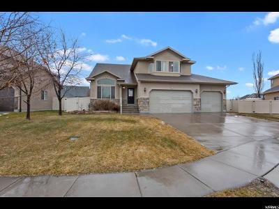 Layton Single Family Home For Sale: 694 W 650 S