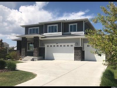 Eagle Mountain Single Family Home For Sale: 4179 E Penny Ln