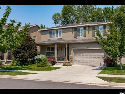 Sandy Single Family Home For Sale: 821 E Whisper Cove Rd