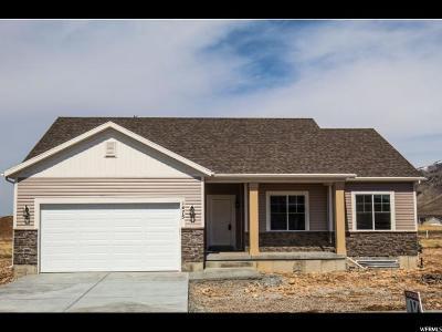 Hyrum Single Family Home For Sale: 1475 E 340 S