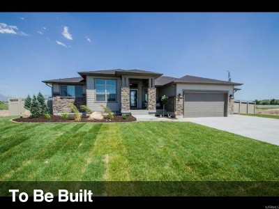 Davis County Single Family Home For Sale: 369 E 6775 S
