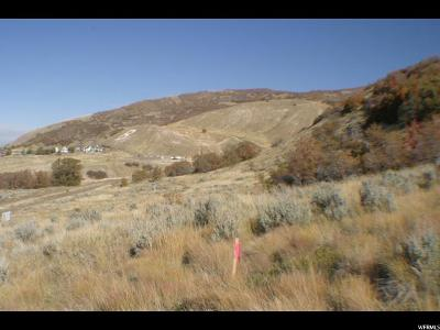 Davis County Residential Lots & Land For Sale: 1 N Bountiful Blvd