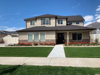 Springville Single Family Home For Sale: 638 W 600 S
