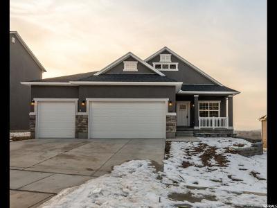 Santaquin Single Family Home For Sale: 126 S 1030 E