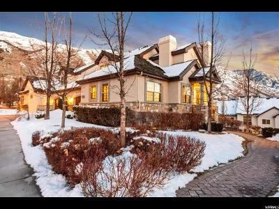 Provo, Orem Single Family Home For Sale: 1034 E Waterford Ln N
