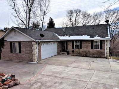 Springville Single Family Home For Sale: 878 E 400 N
