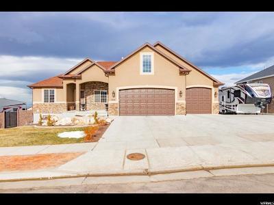 Tooele County Single Family Home For Sale: 1251 E Via La Costa S