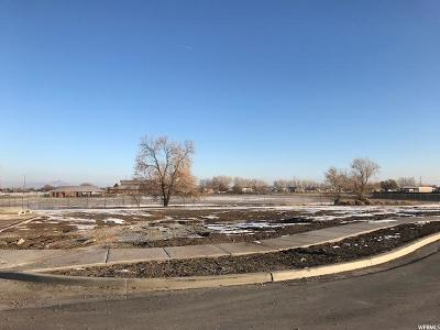 Tooele County Residential Lots & Land For Sale: 319 S Lookout Ridge Dr