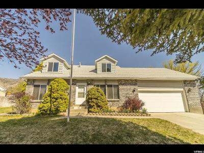 Single Family Home Under Contract: 4250 W Sumac Ct
