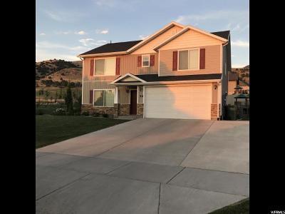 Smithfield Single Family Home For Sale: 56 S 1100 E