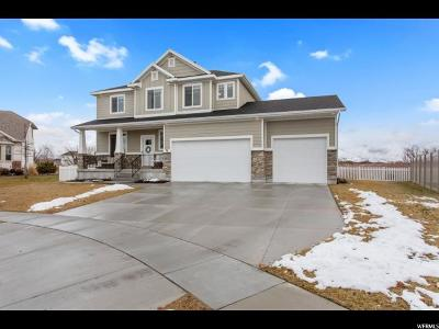Layton Single Family Home For Sale: 601 W Abbey Way S