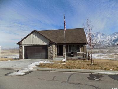 Santaquin Single Family Home For Sale: 1329 Sageberry Dr