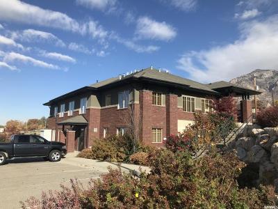 North Ogden Commercial For Sale: 365 E Lomond View Dr #101
