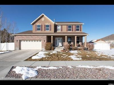 Stansbury Park Single Family Home For Sale: 5641 N Poppy Cir W