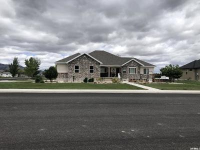 Huntington Single Family Home For Sale: 115 E 300 S