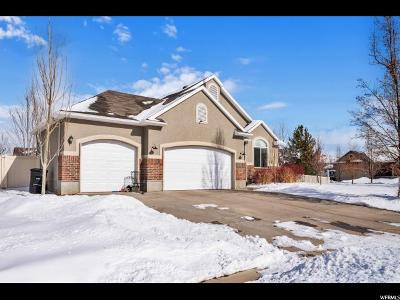 Wasatch County Single Family Home For Sale: 1034 W 1060 S
