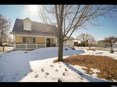 Brigham City Single Family Home For Sale: 5580 N Highway 38