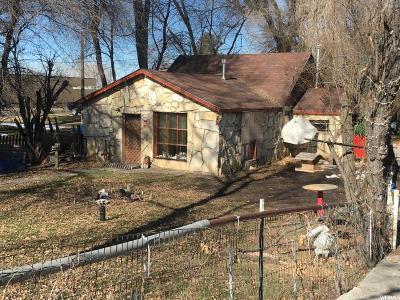 Springville Single Family Home For Sale: 835 E 400 S