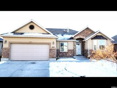 Lehi Single Family Home For Sale: 2537 W 2350 N