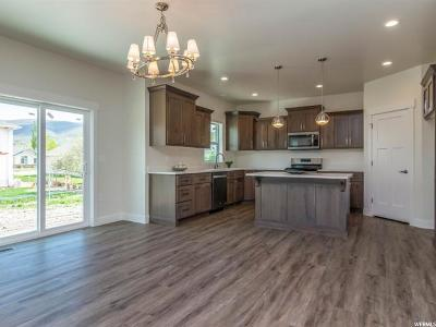 Wasatch County Single Family Home For Sale: 689 E 170 N #3