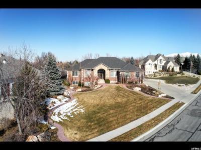 Kaysville Single Family Home For Sale: 289 E Boynton Rd