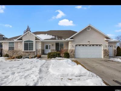 Alpine Single Family Home For Sale: 596 Ridge Ln