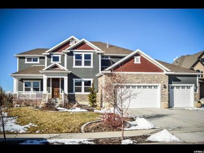 Lehi Single Family Home For Sale: 469 N Willow Haven Ave W