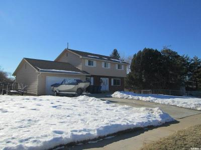 South Ogden Single Family Home Under Contract: 765 E Chambers S
