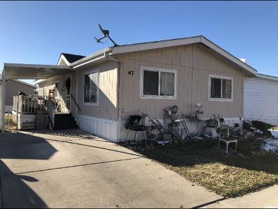 Springville Single Family Home For Sale: 1025 N 300 W #47