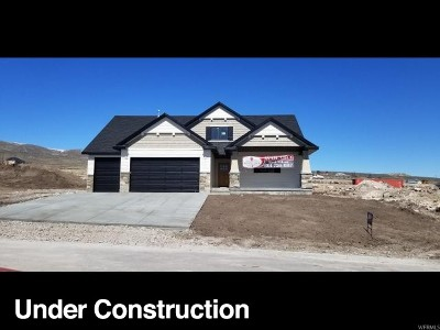 Tremonton Single Family Home For Sale: 2798 W Valley View Dr.