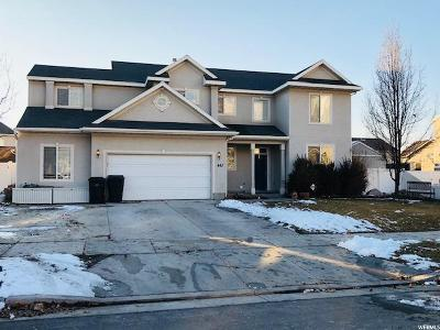 Springville Single Family Home For Sale: 443 N 800 W