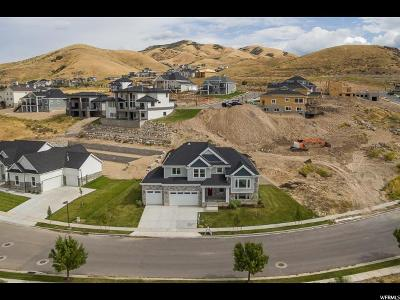 Lehi Single Family Home For Sale: 4318 N Crest Ridge Rd E #67
