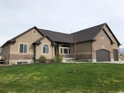 Erda Single Family Home For Sale: 3866 N Rose Springs Rd W