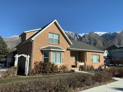 Springville Single Family Home For Sale: 101 E 400 N