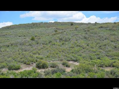 Wasatch County Residential Lots & Land For Sale: 2131 S Westview Dr