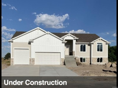 Weber County Single Family Home For Sale: 581 S 1800 W