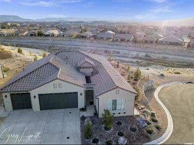 St. George Single Family Home For Sale: 1235 W Desert Sparrow