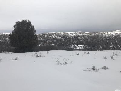 Wasatch County Residential Lots & Land For Sale: 9349 E Lake Pines Dr