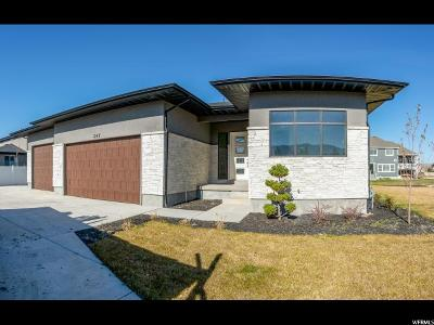 Draper Single Family Home For Sale: 247 E Rhapsody Cv S #304