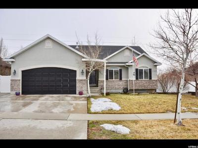 Orem Single Family Home For Sale: 917 W 1630 N
