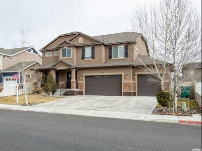 Lehi Single Family Home For Sale: 801 S Willow Park Dr W