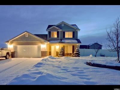 Franklin Single Family Home For Sale: 620 S Lakeside Dr