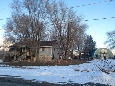 Single Family Home For Sale: 20060 N 5200 W