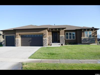 Lehi Single Family Home For Sale: 251 W 1100 S