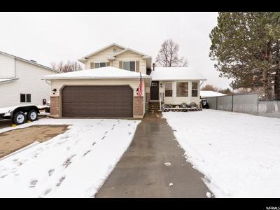 Layton Single Family Home For Sale: 638 S 825 E