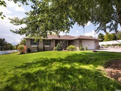 Draper Single Family Home For Sale: 11858 S 700 W