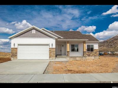 Hyrum Single Family Home For Sale: 1505 E 340 S