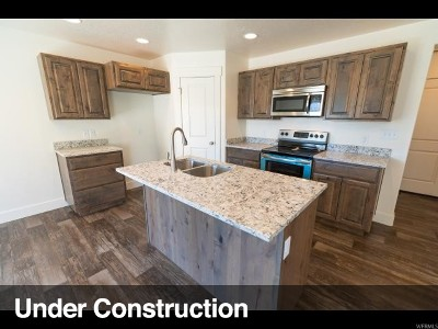 Spanish Fork Townhouse For Sale: 586 S Park View Ln #608