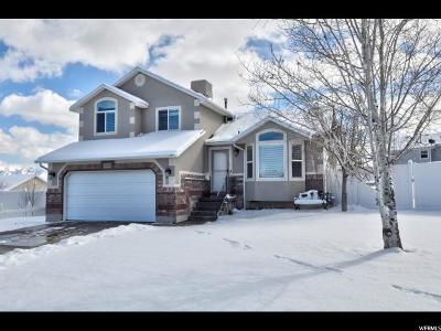Riverton Single Family Home For Sale: 14093 S Grand View Peak Cir